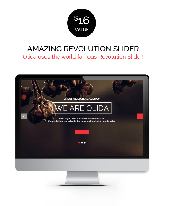 Olida | Responsive One Page Multi-Purpose Parallax
